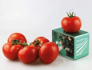 Mit Food-Scannern lassen sich zum Beispiel Zuckergehalt, Festigkeit und Trockenmasseanteil von Tomaten in wenigen Sekunden bestimmen