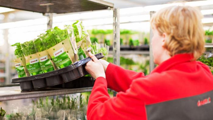 Mit einem Mehrwegsystem für den Pflanzentransport will Toom seinen Plastikabfall reduzieren.