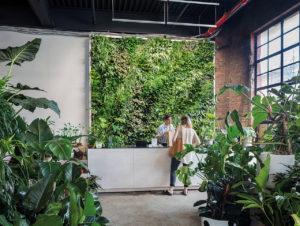 Thema Natur: Der Store Greenery Unlimited in New YorkThe Audo in Kopenhagen: ganzheitliches Ensemble aus Retail Space, Office, Verkaufsfläche, Gastronomie und Luxus-Unterkunft