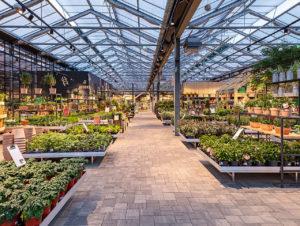 Im Gartencenter Kremer, Lennestadt, komplettiert authentische Beleuchtung mit einer Vielzahl von Lichtpunkten das Naturerlebnis.